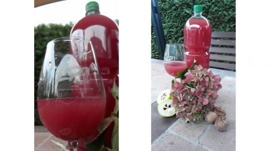 Vinařství Horizont zahájilo prodej růžového burčáku. Foto: Vinařství Horizont